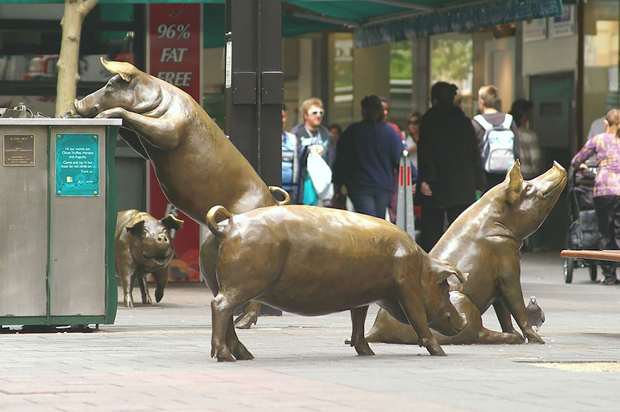 statue belle rundle mall pigs australia