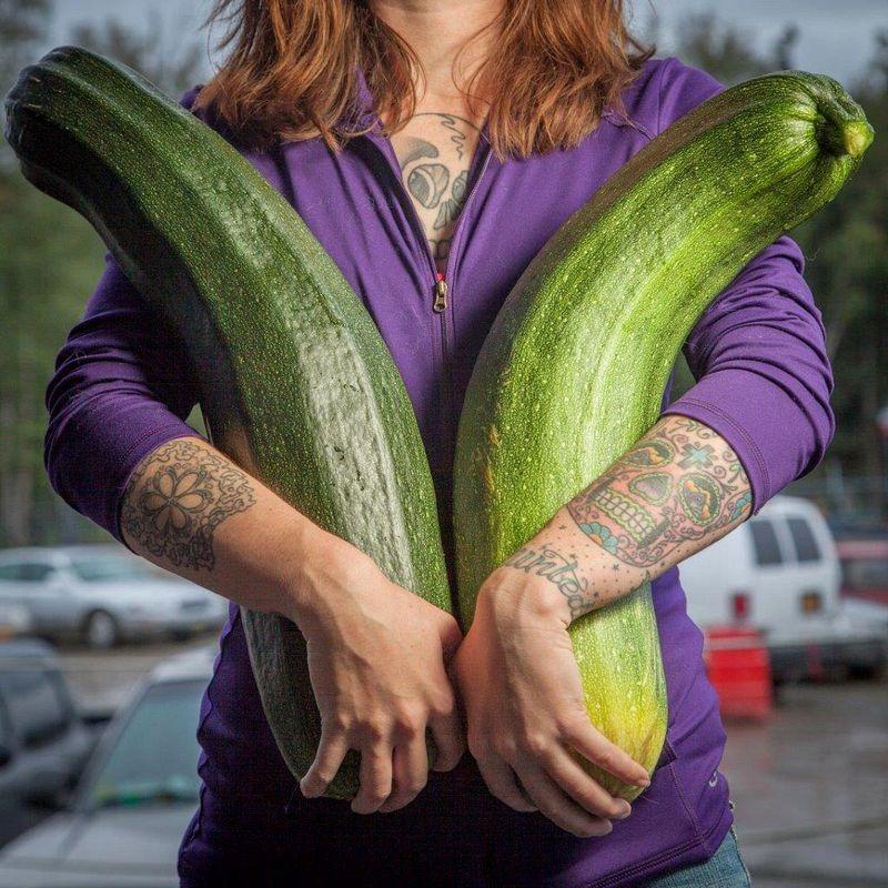 zucchine giganti in Alaska