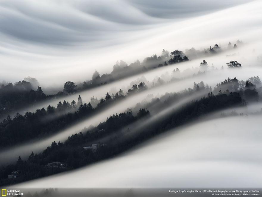Onde di nebbia sulla Mill Valley, California