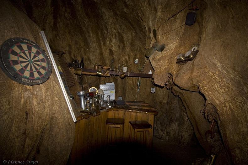 bar dentro a un baobab