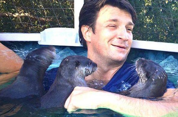 nuoto con lontre