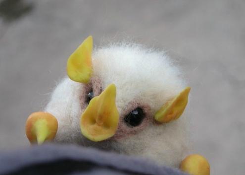 pipistrelli bianchi dell'honduras dormono nelle foglie