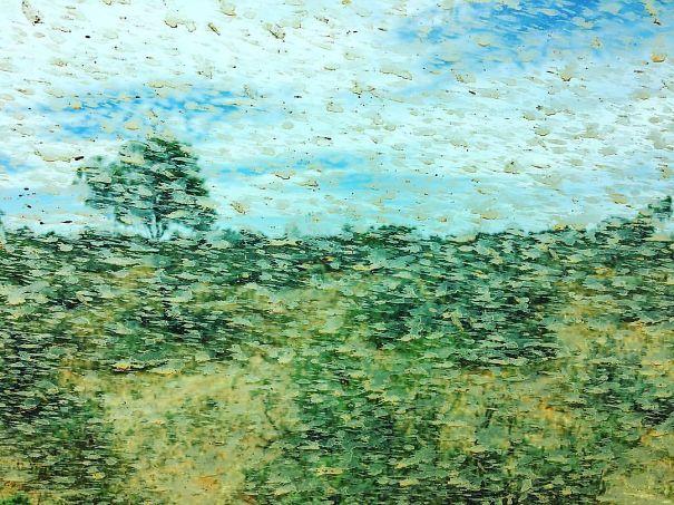 Macchie di fango sul vetro di una macchina creano un quadro simile a quelli di Monet