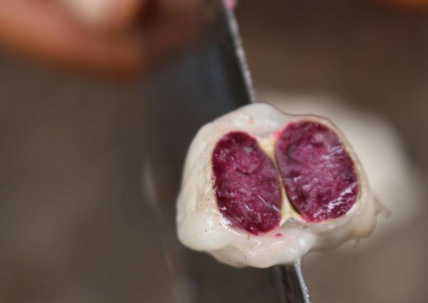 Ecco l'interno di un seme di cacao