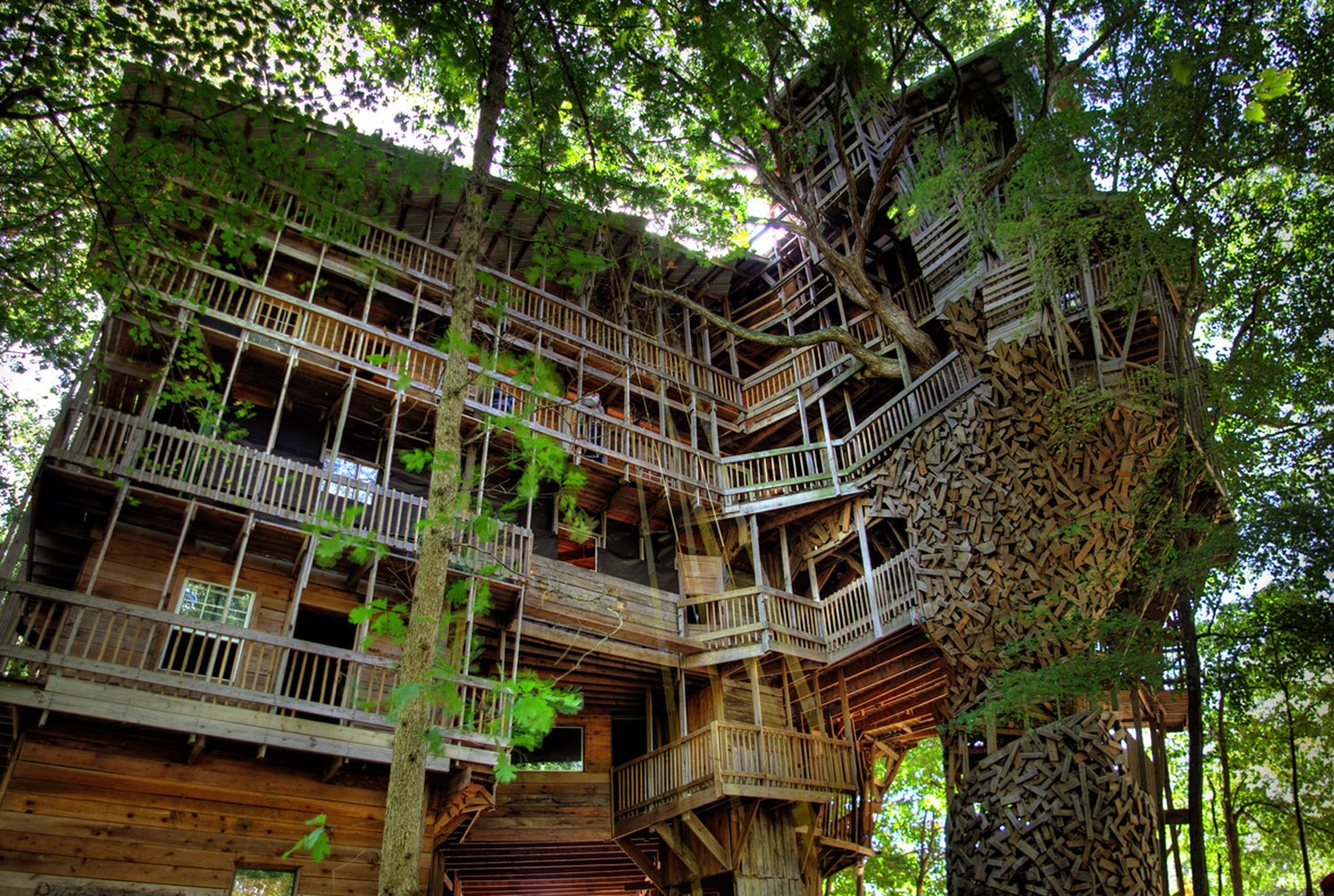 Minister's Tree House – Tennessee