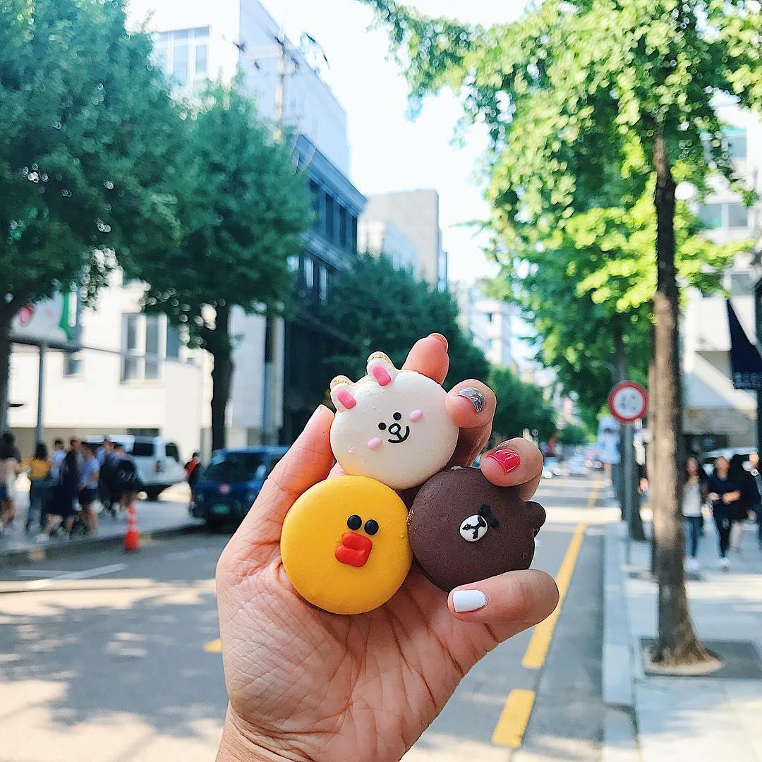 Macarons con gli animali a Seoul, Sud Corea