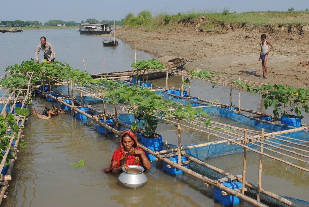 Giardini galleggianti in Bangladesh
