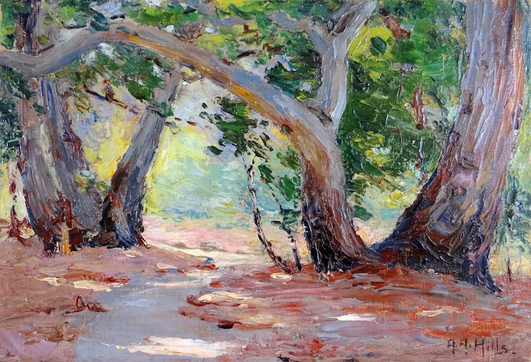 "Anna Althea Hills, ""Sunshine & Shadow-Orange Co. Park, California,"" 1915"
