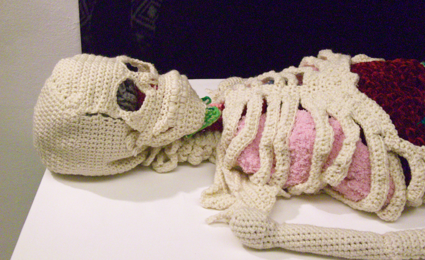 scheletro e gli organi all'uncinetto