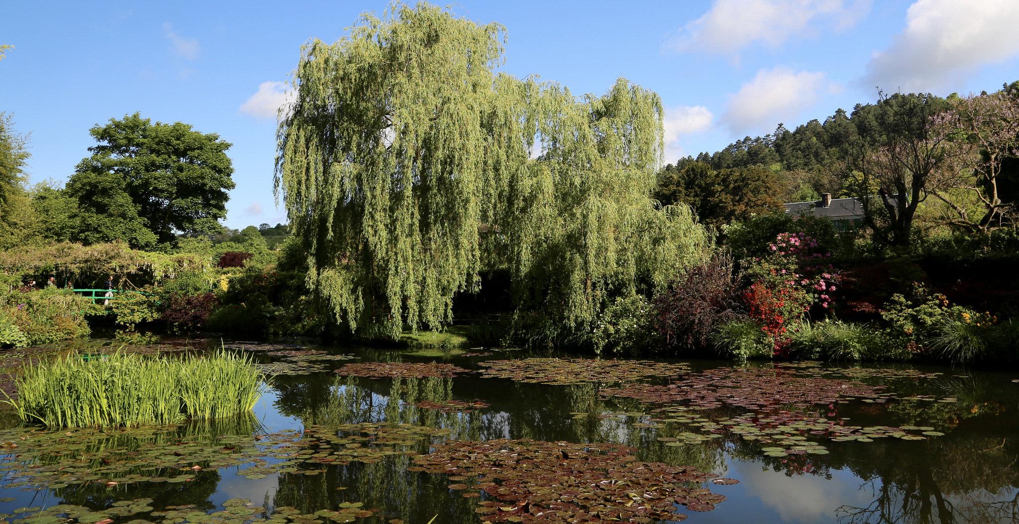 Il giardino di Giverny di Monet