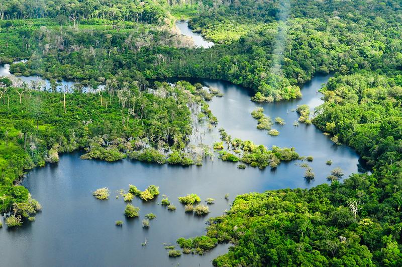 Foresta delle Amazzoni dall'alto