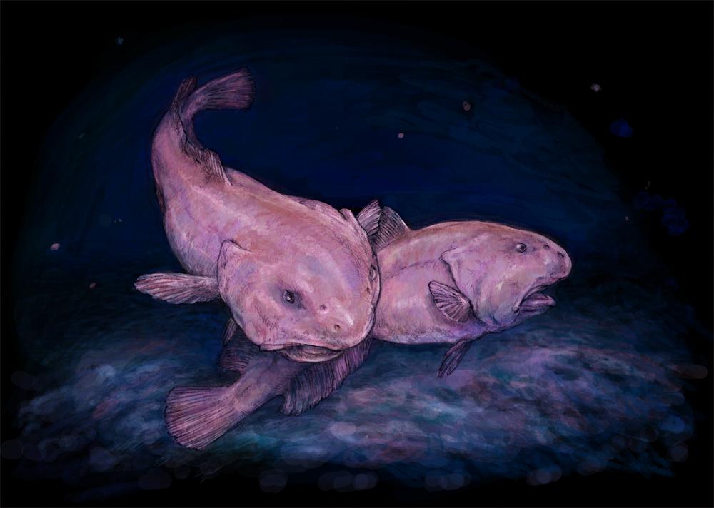 Il pesce blob