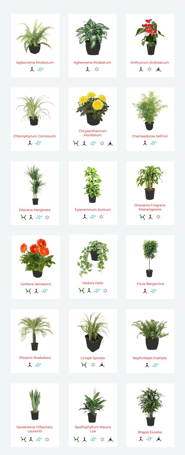 piante purificatrici secondo lo studio della NASA