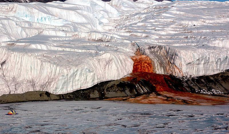 Cascate di sangue in Antartide