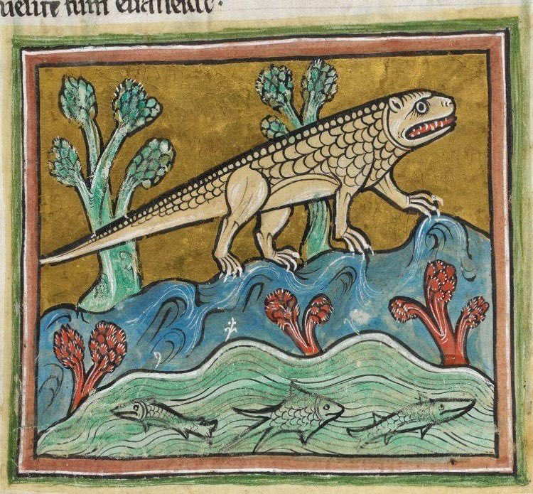 Un coccodrillo con testa da puma. Dal Bestiario Rochester