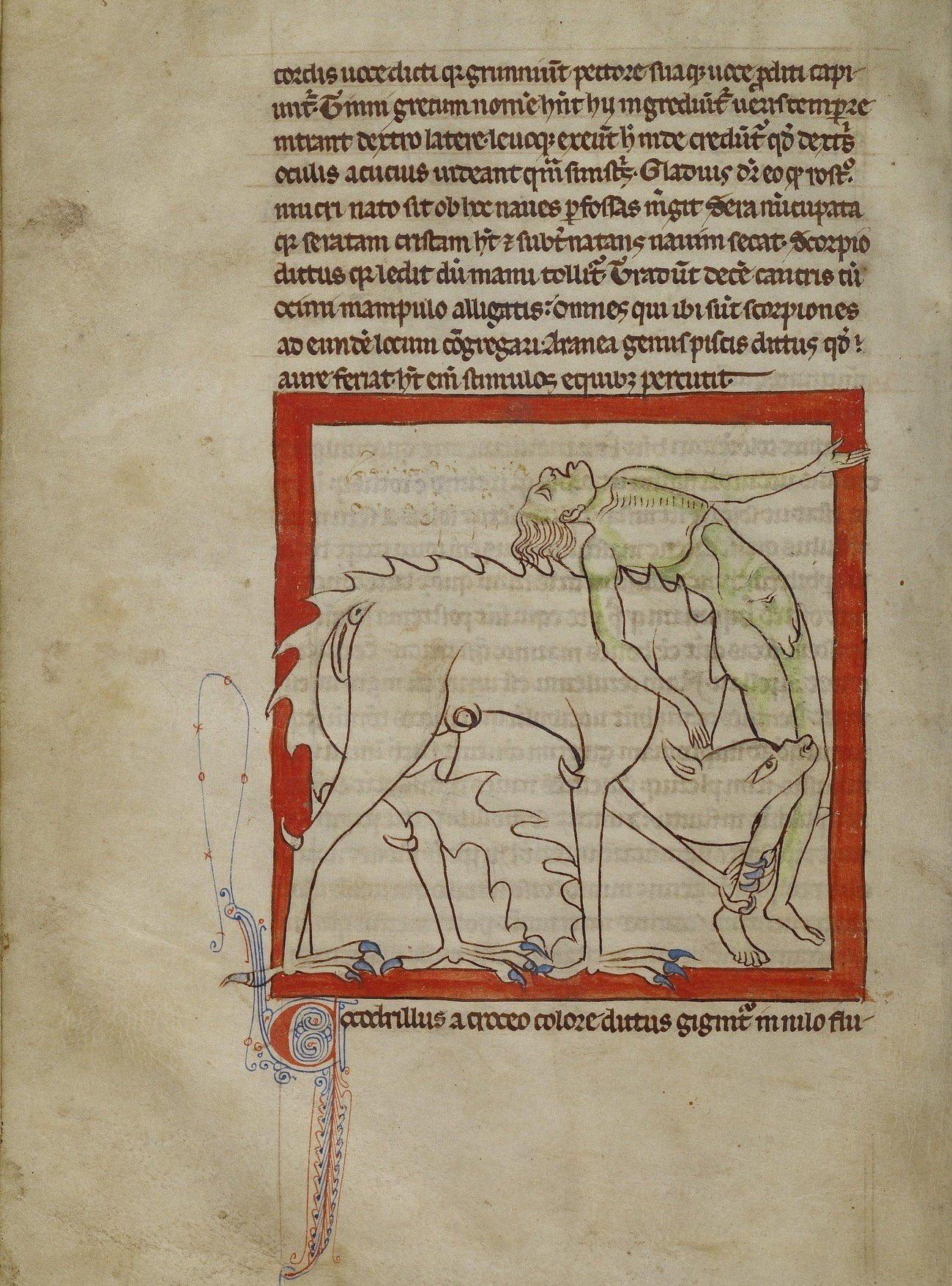 Coccodrillo. Artista sconosciuto (1250-1260)