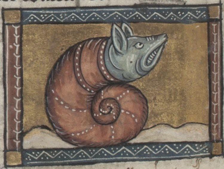 Lumaca. Jacob van Maerlant (circa 1350)