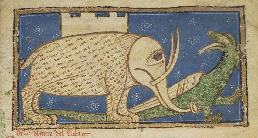 Un elefante (senza orecchie) con un castello sulla schiena. Di Guillaume le Clerc dal Bestiario di William the Clerk